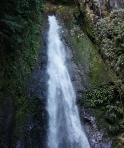 Syndicate Waterfall fraicheur à la Dominique