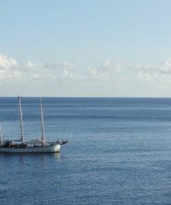 Le Rara Avis vu des hauteurs de Saba